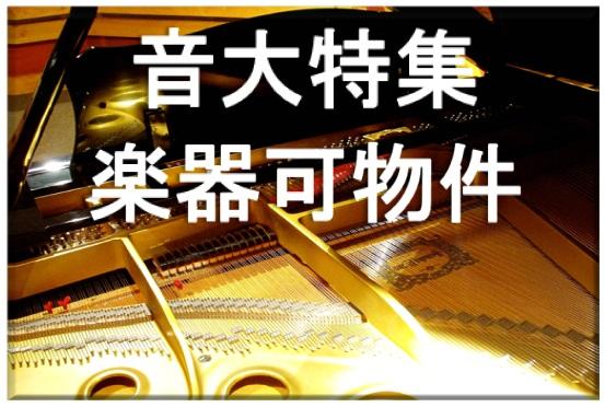 音大特集   楽器演奏  可物件