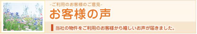 voice_ti.jpg